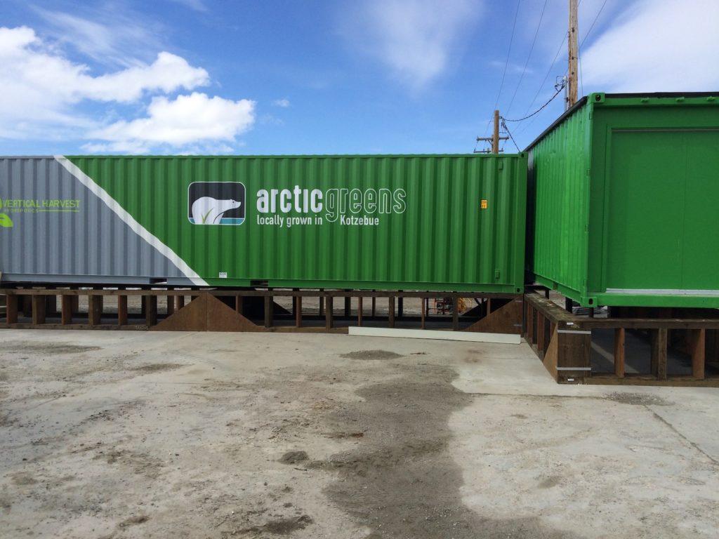 Foto Arctic Greens Container