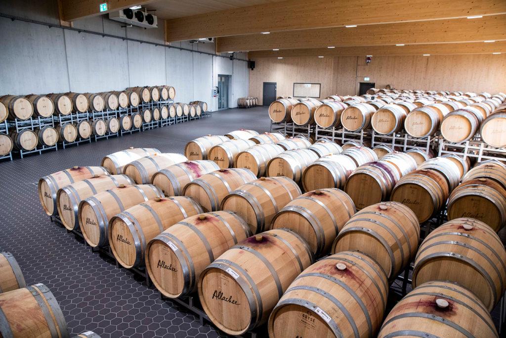 Weinfässer Weingut Allacher